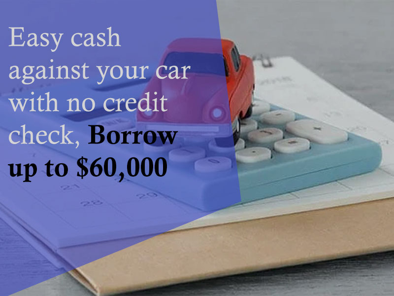 Online Loans No Credit Check
